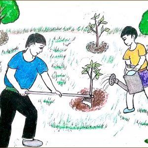 Bé tư duy - trồng cây và tưới nước