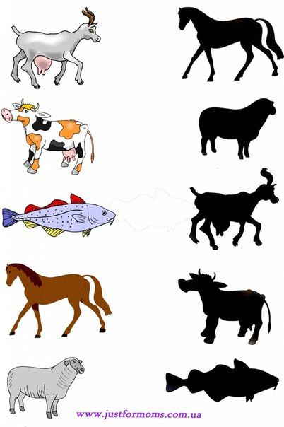 animal-shadow-match-worksheets-10