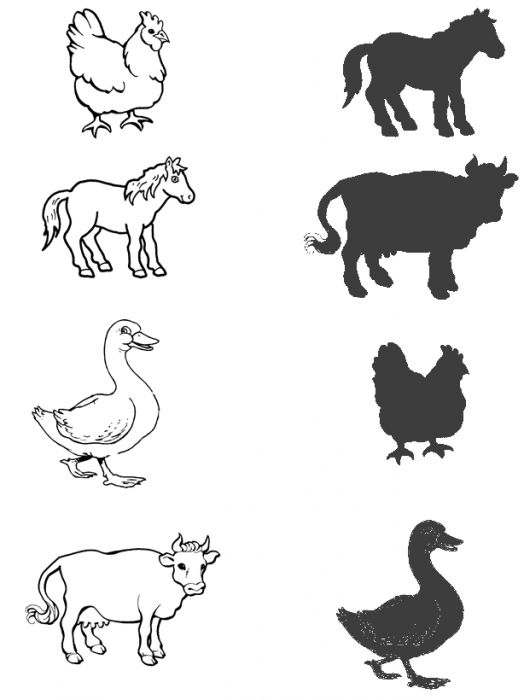 animal-shadow-match-worksheets-5