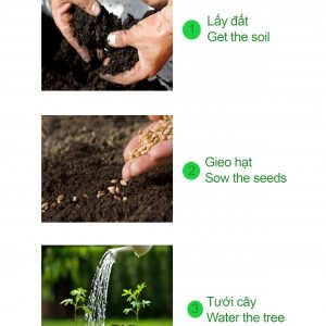 Bé tư duy - how to plant a tree