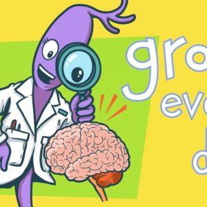 Brain learn - betuduy.vn1