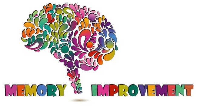 Cơ chế ghi nhớ của não bộ 3
