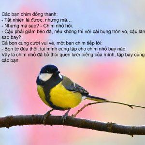 Chú chim nhỏ lười biếng 5