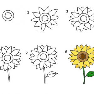 Ve hoa huong duong 2 - edit