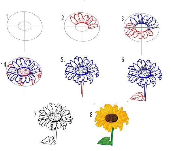 Ve hoa huong duong 3 - edit