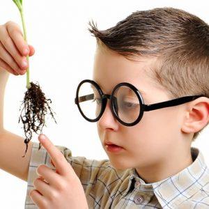 khám phá sự tò mò ở trẻ