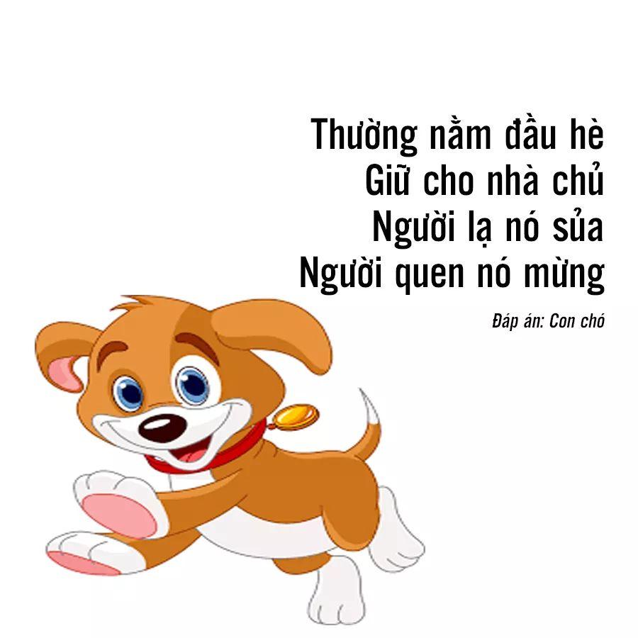 FB_IMG_1533960737147