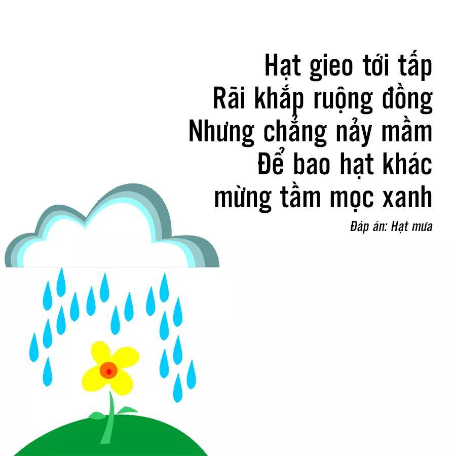 FB_IMG_1533960747929