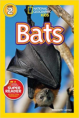 National Geographic kids: Level 2: Bats