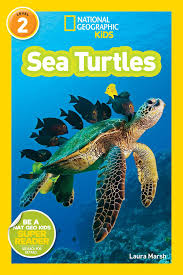 National Geographic kids: Level 2: Sea Turtles