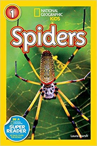 National Geographic kids: Level 1: Spiders