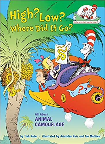 The cat in the hat: High, low, where did it go?