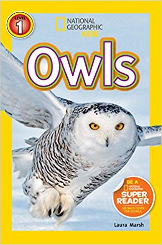 National Geographic kids: Level 1: Owls