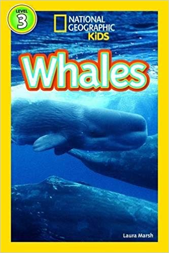National Geographic kids: Level 3: whales